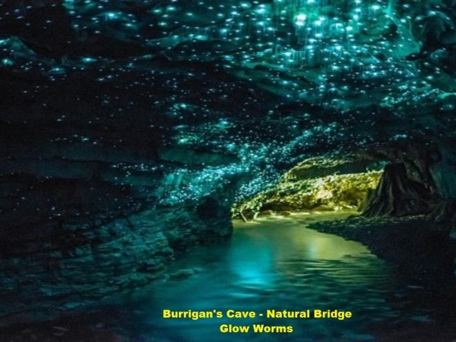 Springbrook - glow worms - natual bridge ...Burrigan - labelled